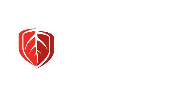 SCL19996-Stoney-Creek-Logo-REVERSED-HORIZONTAL-FA-[Converted]
